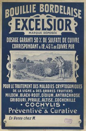 bouilliebordelaise-01.jpg
