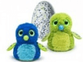 vente de hatchimals de qualité